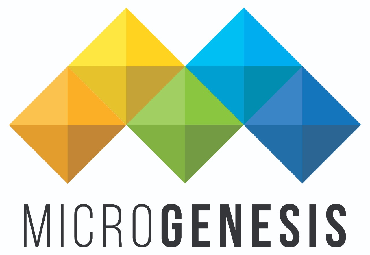 Microgenesis Techsoft Pvt. Ltd.